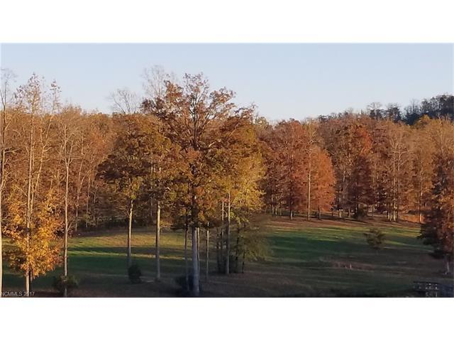 5048 Peniel Road, Tryon, NC 28782 (#3338933) :: Caulder Realty and Land Co.