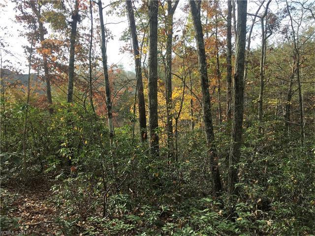 0 Whitesides Court #83, Lake Lure, NC 28746 (#3339070) :: Caulder Realty and Land Co.