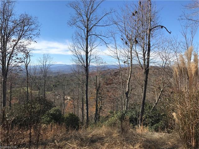 215 Crossvine Trail, Hendersonville, NC 28739 (#3339114) :: Exit Mountain Realty