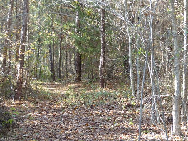 0 Dimsdale Drive 34, 35, Rutherfordton, NC 28139 (#3339172) :: Caulder Realty and Land Co.