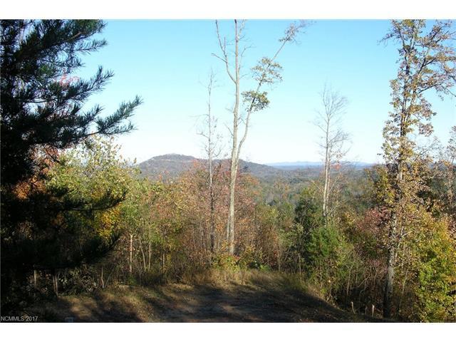 53 Bear Cliff Way #53, Lake Lure, NC 28746 (#3339488) :: Caulder Realty and Land Co.