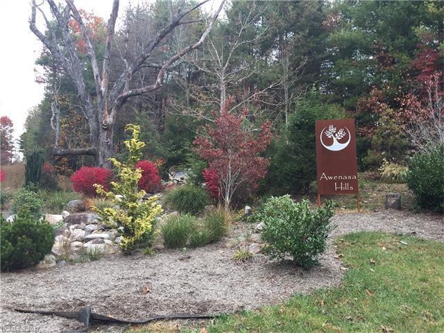 Lot 30 Trellem Trail, Hendersonville, NC 28739 (#3339526) :: RE/MAX Four Seasons Realty