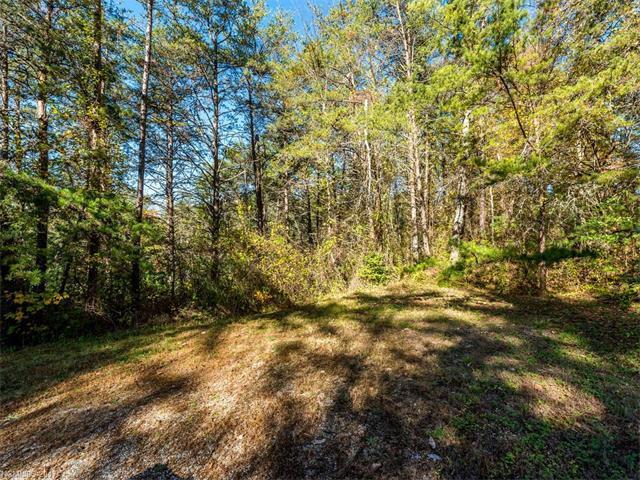 40 Clearview Lane, Weaverville, NC 28787 (#3339598) :: Exit Realty Vistas