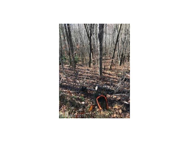 000 Ivy Way #201, Mars Hill, NC 28754 (#3339705) :: Exit Realty Vistas
