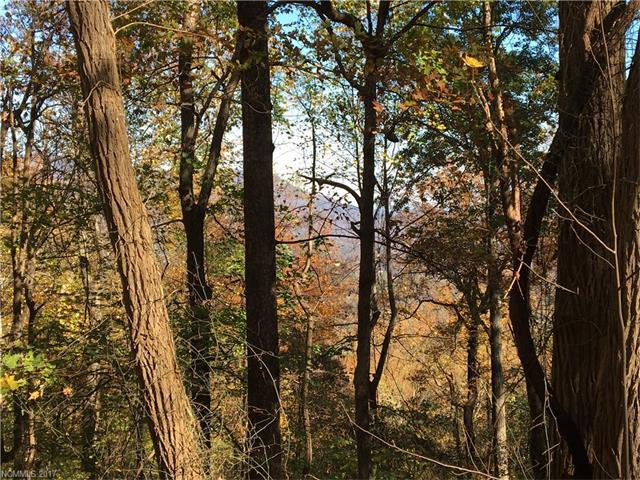 00 Hogback Mountain Road Lot 64, Tryon, NC 28782 (#3340042) :: Caulder Realty and Land Co.