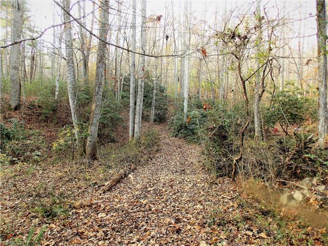 0 Brookgreen Lane Tract 2 - 2.63 , Hendersonville, NC 28739 (#3340184) :: Caulder Realty and Land Co.