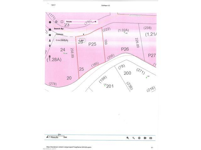 000 Berry Creek Drive, Flat Rock, NC 28731 (#3342267) :: Caulder Realty and Land Co.