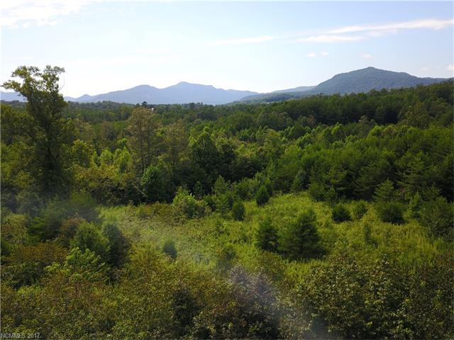 1691 Bills Creek Road, Lake Lure, NC 28746 (#3343984) :: Caulder Realty and Land Co.