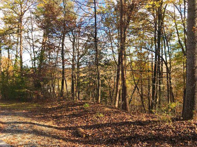 LOT 16 Wilkerson Court, Lake Lure, NC 28746 (#3344003) :: Caulder Realty and Land Co.