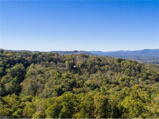 169 Summit Hill Road #1517, Hendersonville, NC 28791 (#3344298) :: Caulder Realty and Land Co.