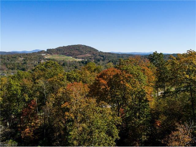 77 Millbrae Loop #1663, Hendersonville, NC 28791 (#3345487) :: Caulder Realty and Land Co.