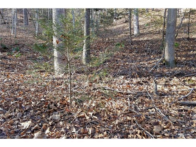 0 Deerfield Drive #171, Lake Lure, NC 28746 (#3347743) :: Caulder Realty and Land Co.