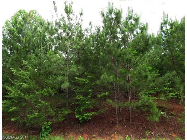 153 Chimney Creek Lane #187, Rutherfordton, NC 28139 (#3348053) :: Caulder Realty and Land Co.