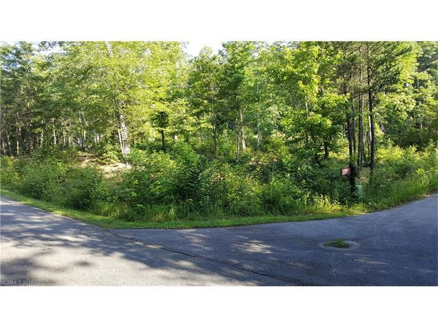 Lot 10C Renard Road 10C, Tryon, NC 28782 (#3349085) :: Caulder Realty and Land Co.