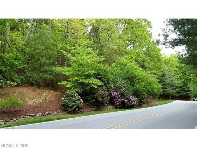 1010 Indian Cave Road, Hendersonville, NC 28739 (#3350513) :: Caulder Realty and Land Co.