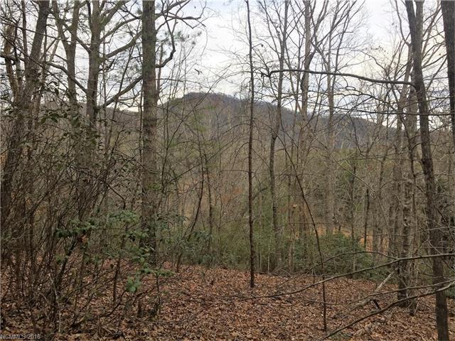 0 Shumont Estates Drive #108, Lake Lure, NC 28746 (#3351103) :: Caulder Realty and Land Co.
