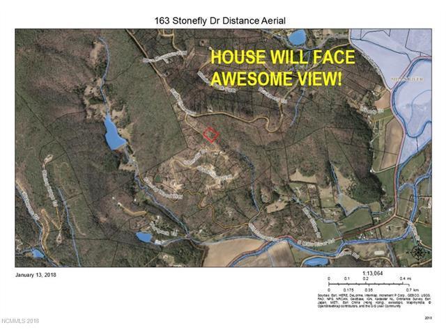 163 Stonefly Drive #121, Horse Shoe, NC 28742 (#3351728) :: Puffer Properties