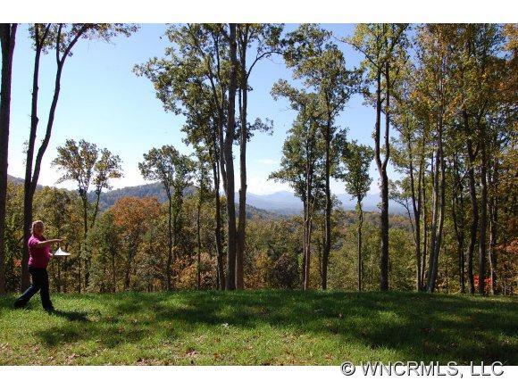 38 Beaverdam Knoll Road, Asheville, NC 28804 (#NCM527800) :: Exit Realty Vistas