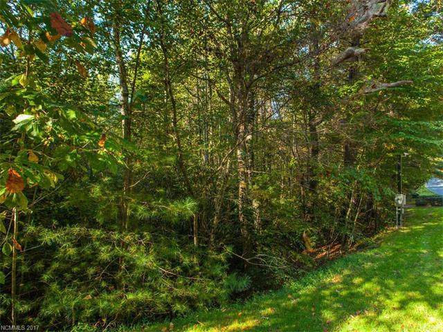 000 Chattooga Run, Hendersonville, NC 28739 (#3325666) :: Caulder Realty and Land Co.