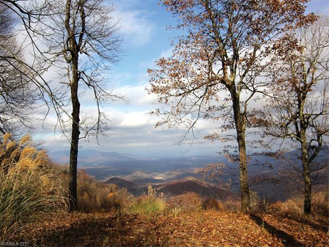 109 High Cliffs Trail, Black Mountain, NC 28711 (#3338413) :: Rowena Patton's All-Star Powerhouse @ Keller Williams Professionals