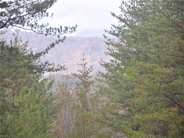 0 Bible School Road, Lake Lure, NC 28746 (#3339417) :: Caulder Realty and Land Co.