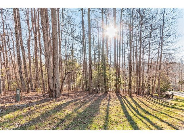 200 Bent Tree Trace #162, Hendersonville, NC 28739 (#3347321) :: Caulder Realty and Land Co.