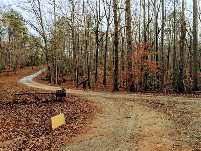 420 Artesian Lane, Tryon, NC 28782 (#3350395) :: Caulder Realty and Land Co.