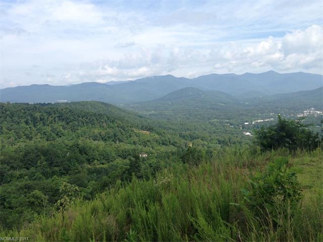 118 Settings Boulevard #211, Black Mountain, NC 28711 (#3291898) :: Exit Realty Vistas