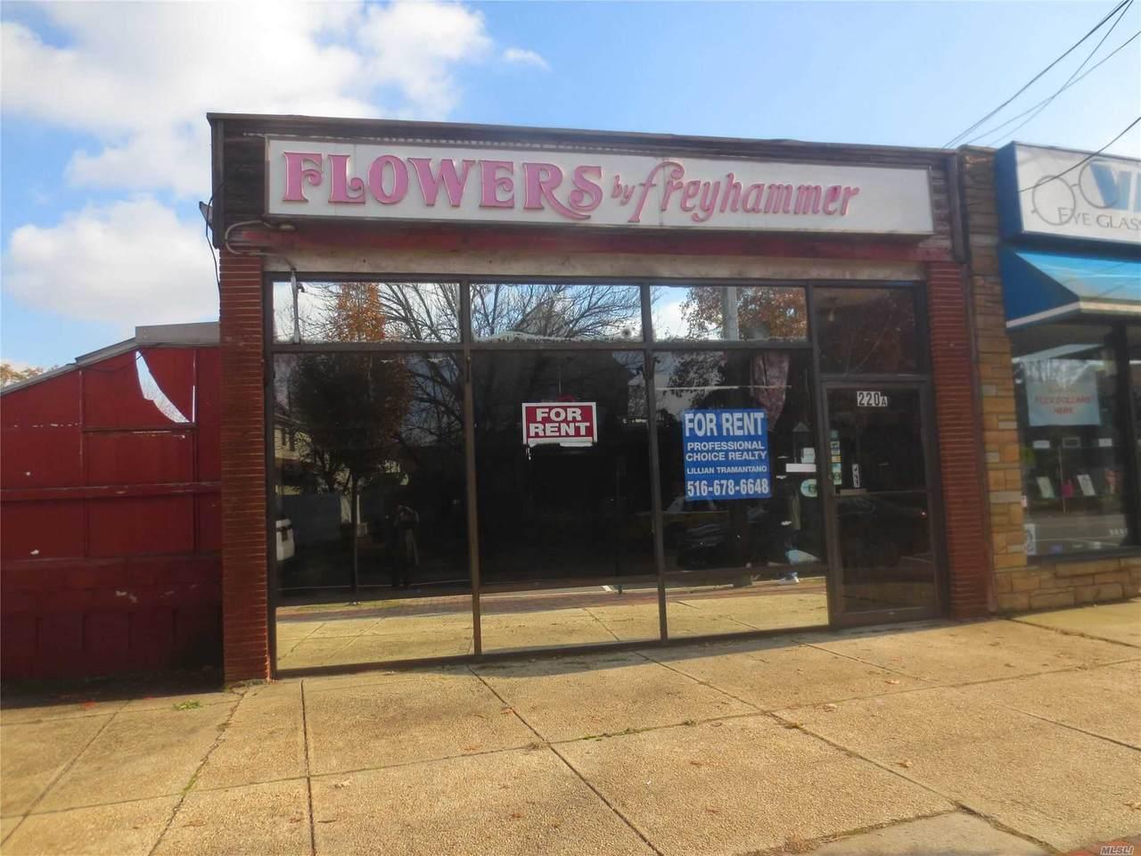 220 Hempstead Avenue - Photo 1
