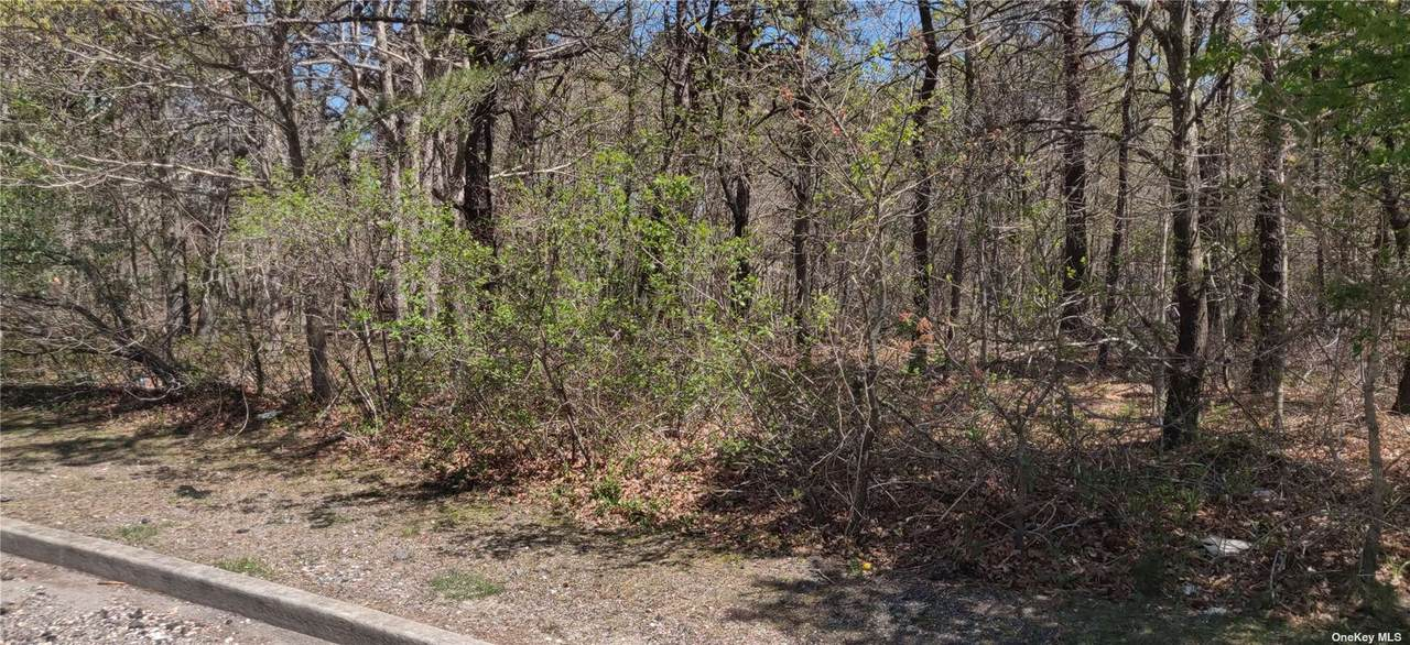 Lot 2 Brookwood Ln - Photo 1