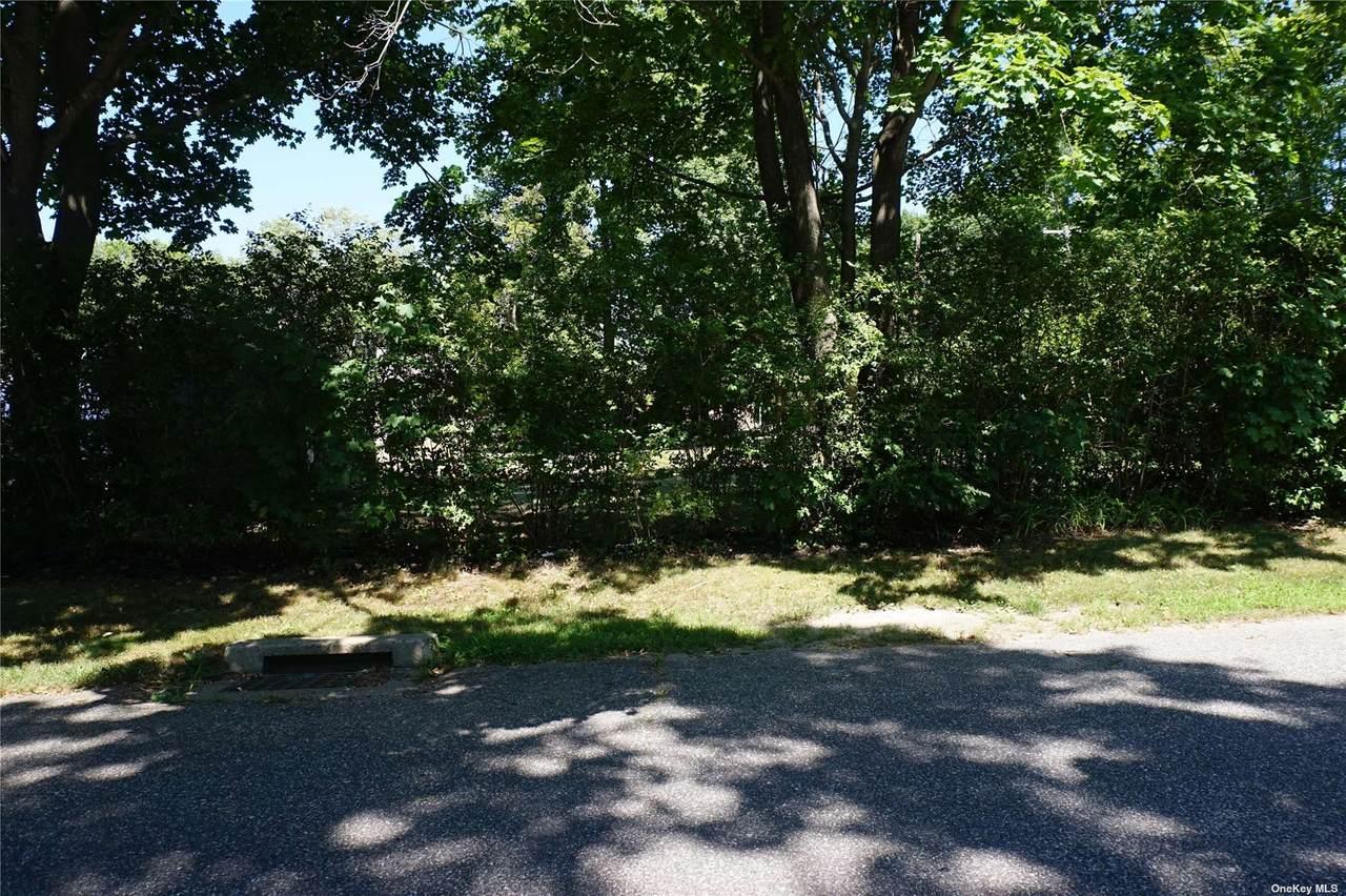 lots23,24, Putnam Avenue - Photo 1