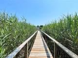 11 Fiddler Crab Trail - Photo 31