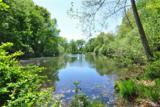 13 Manor Pond Lane - Photo 27