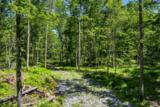 Trillium Trail - Photo 12