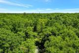 Trillium Trail - Photo 4