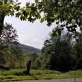 Mt Meenagha Road - Photo 1