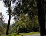 Mt Meenagha Road - Photo 2