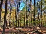 41 Fern Wood Way - Photo 11