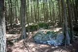 (3.5) Swamp Pond Road - Photo 21