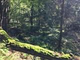 173 Bushville Swan Lake Road - Photo 10