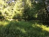 173 Bushville Swan Lake Road - Photo 2