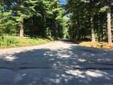 173 Bushville Swan Lake Road - Photo 24