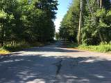 173 Bushville Swan Lake Road - Photo 26