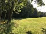173 Bushville Swan Lake Road - Photo 5