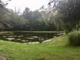 107 Stump Pond Road - Photo 2