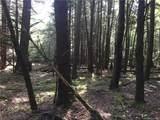 Mongaup Trail - Photo 1
