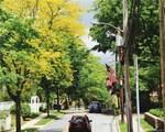 39 Washington Avenue - Photo 16