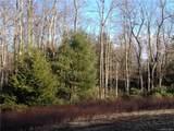 Pine Lake Drive - Photo 6