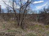 Blueberry Hill-Indian Tri - Photo 4
