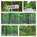 19 Canaan Circle - Photo 1